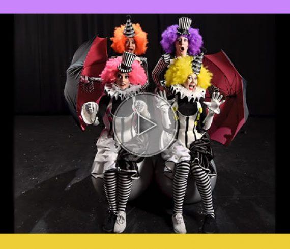 circus show, spectacle de cirque,