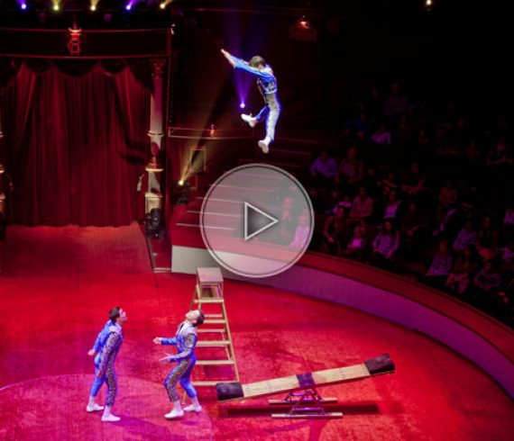 spanish, spain, teeterboard, springboard, bascule, trio, acrobate, espagnol