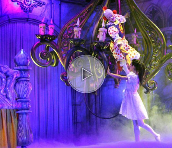 spectacle de cirque, cirque enchanté, spectacles de cirque, le cirque, cirque événementiel, cirque magique, cirque féérique