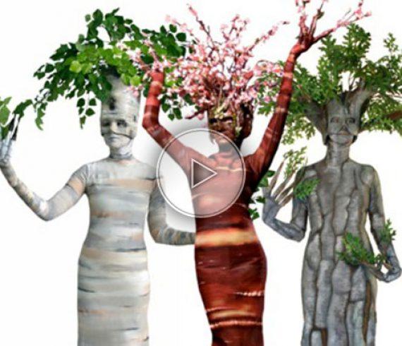 arbres vivants, fleurs vivantes, atistes arbres, animations déambulatoire nature, nature, artistes fleurs