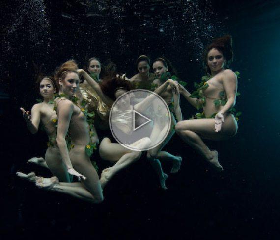 ballet aquatique, nageuses synchronisées, ballet aquatique, spectacle aquatique, natation synchronisée
