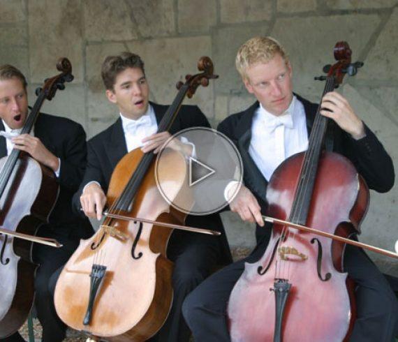 jongleur et violoncelle, violoncelle, jonglage et musique, jongleur et musique