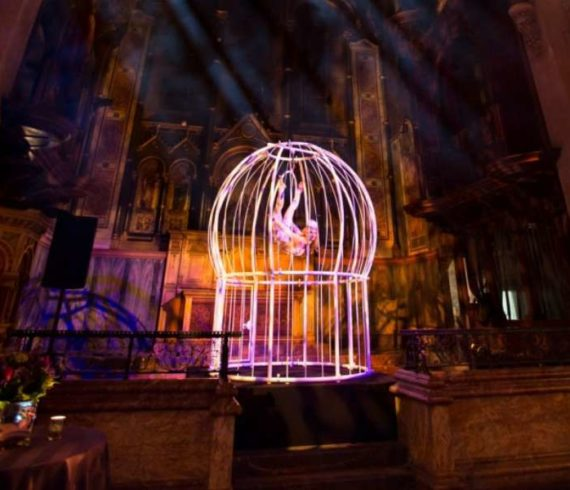 artiste en cagen cage artist, birdcage performer, animation dans une cage d'oiseau