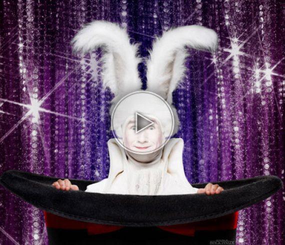 magie d'alice, lapin, lapin magicien, alice au pays des merveilles, lapin d'alice, lapin magique