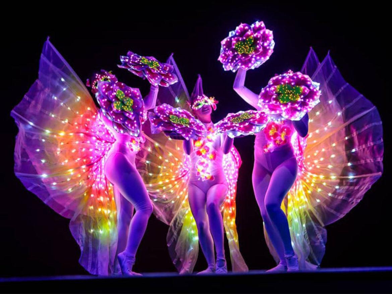 danseuses lumière nature, danse lumineuse, danseurs lumineux, danseurs lumière, danse lumière