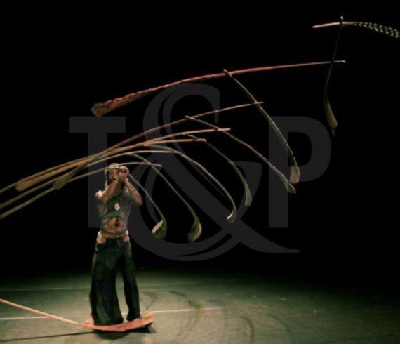 numéro incroyable, belgique, batons en équilibre, Arendonk, artiste, artiste événementiel, spectacle événementiel
