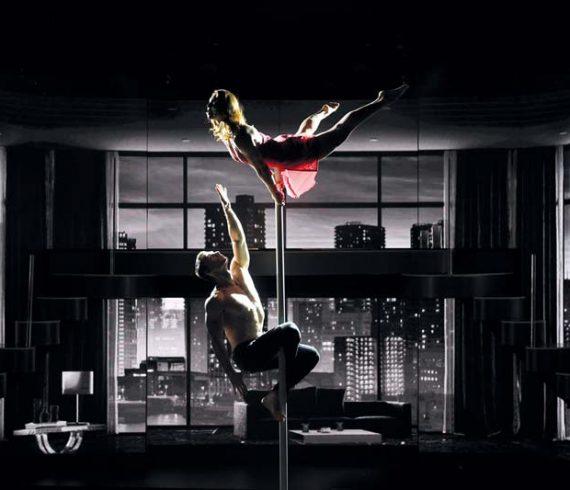 duo de mât chinois, duo acrobatique, couple au mât, duo au mât, mat aérien