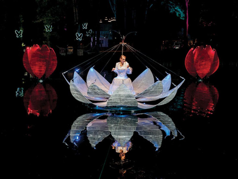 Fleurs éclairées, événement sur le thème de l'eau, fleurs sur l'eau, fleurs, spectacle d'eau, événement aquatique, spectacle d'eau, acte de l'eau, acte de fleur, divertissement floral